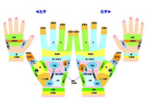 手反射区表